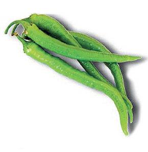 Yeşil biber kanamaları durduruyor