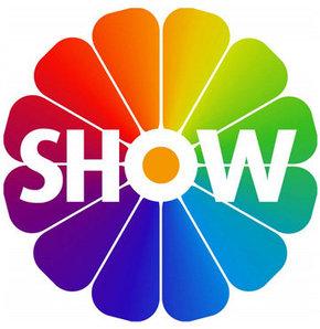 Шоу - 2013 на телеканалах