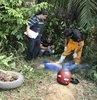 Amazon'daki çevreci cinayetleri ürküttü