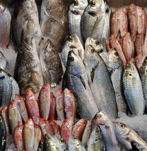 Balıkların avlanma boyu uzadı!