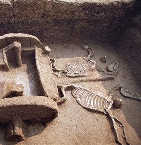 Çin'de 2500 yıllık savaş arabaları