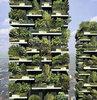 Hava kirliliğine karşı 'orman kuleler' geliyor
