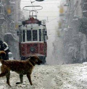 705620 detay - İstanbul'a kar geliyor!