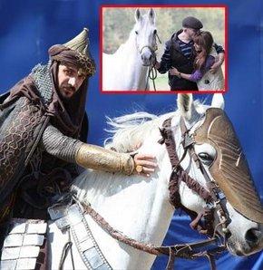 Fatih'ten satılık 15 bin liraya at