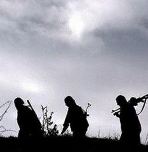Kandil Dağı'na çığ düşmesi sonucu 8 PKK'lı kadın öldü...