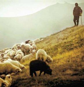 Anadolu Filarmoni'den çobana konser