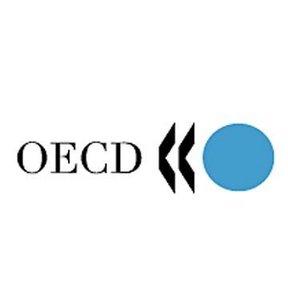 OECD'den 'toparlanma' sinyalleri!