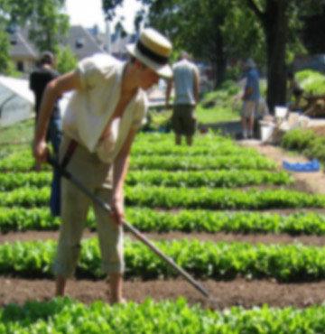 Hastalara çiftçilik terapisi