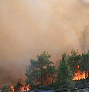 Mersin'in Gülnar İlçesi'nde akşam saatlerinde başlayan orman yangını devam ediyor. Yangınının yerleşim birimlerine yaklaşması nedeniyle şu ana kadar 3 köy boşaltıldı.