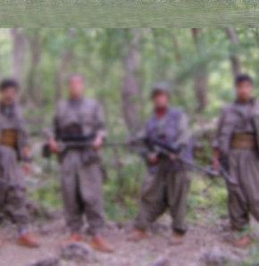 PKK'nın kuruluş kadrosu dağıldı