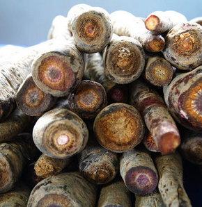 Konya'nın Ereğli ilçesinde yetiştirilen ve iltihap kurutucu ve ateş düşürücü özelliği bulunduğu belirlenen siyah havuçlar, dünyanın birçok ülkesine ihraç ediliyor.