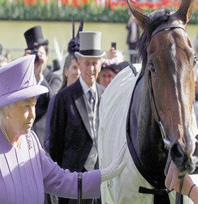Kraliçe'ye nasıl at eti yedirdiler?