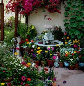 Bahçenizi süsleyin