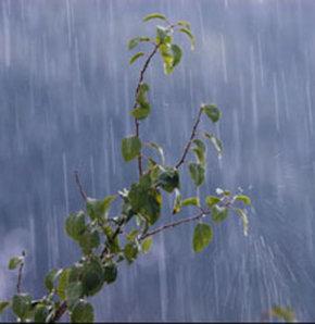 Meteoroloji genel müdürlüğü kayseri niğde sivas nevşehir
