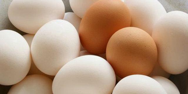 Doğurganlığı arttıran 5 gıda