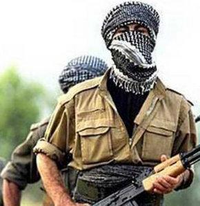 Siirt,PKK,terörist,teröristler teslim oldu,Siirt'te 2 PKK'lı teslim oldu, 2 PKK'lı teslim oldu