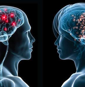 Beynin de cinsiyeti var, beyniniz erkek mi dişi mi