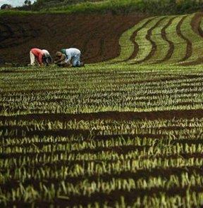 tarımsal araziler miras ya da satış yoluyla küçük parçlara bölünemeyecek.