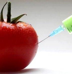 GDO'lu ürünlerin satışına izin çıktı, GDO'lu ürünler, GDO , milupa, aptamil , Gıda, Tarım ve Hayvancılık Bakanlığı,