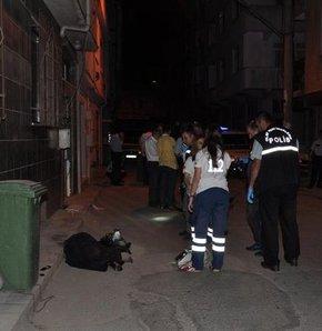Bursa'da kadın cinayeti Bir kadın cinayeti daha Bursa'da cinayet Genç kadının başını ezdiler Genç kadın başı ezilerek öldürüldü