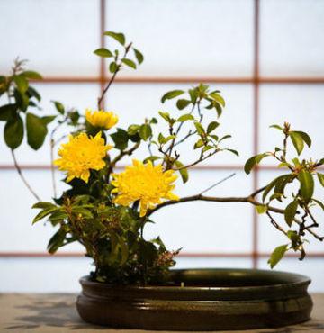 Çiçek düzenlemek bir sanattır