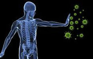 Oruç, bağışıklık sistemini güçlendiriyor
