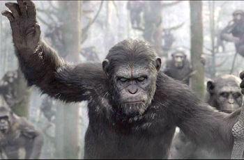 Maymunlar Cehennemi şafak Vakti Maymunlar Cehennemi The Bagman