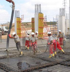 Akkuyu Nükleer Santrali, Türk şirketi