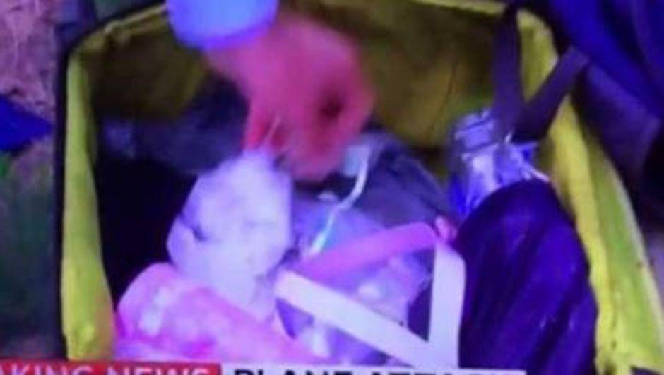 Sky News muhabiri özür diledi