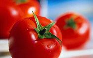 Domates yemeniz için 10 neden