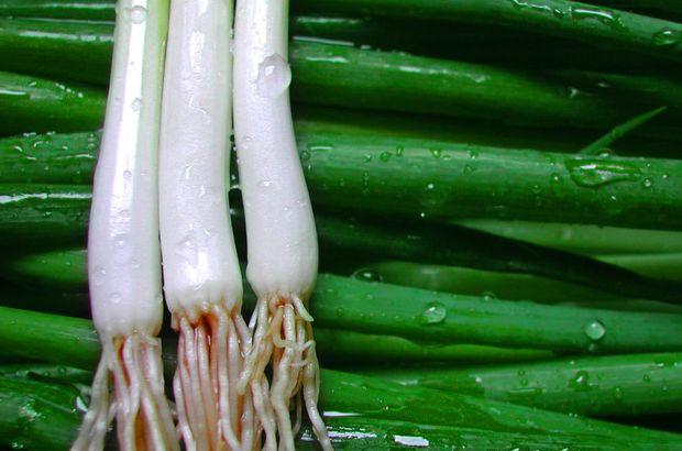 Ağustos ayında marketlerde fiyatı en fazla artan ürün yeşil soğan oldu.