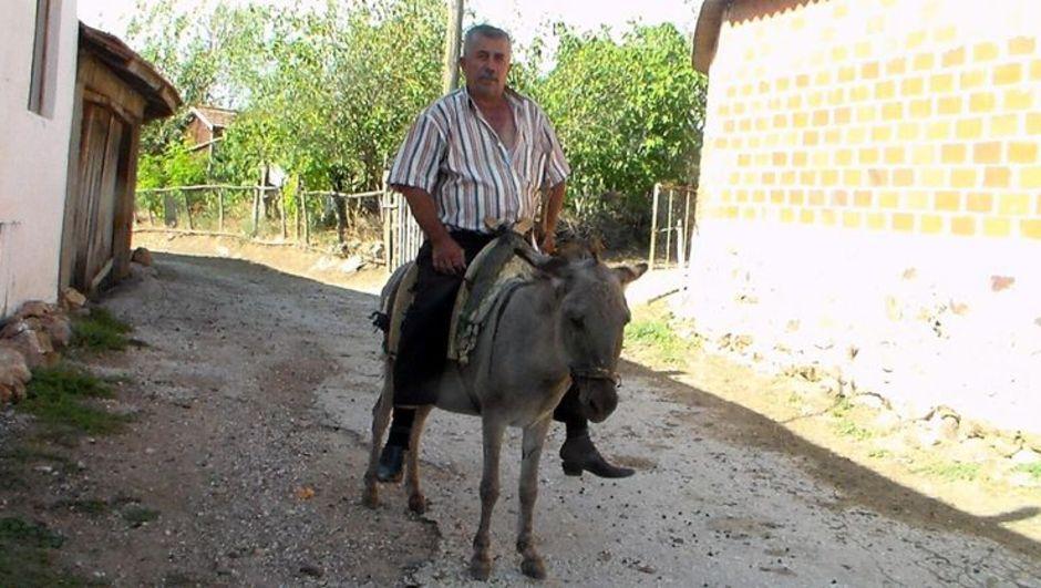 Çanakkale'nin Bayramiç İlçesi'nde, Kahraman eşek sahibini kurtardı