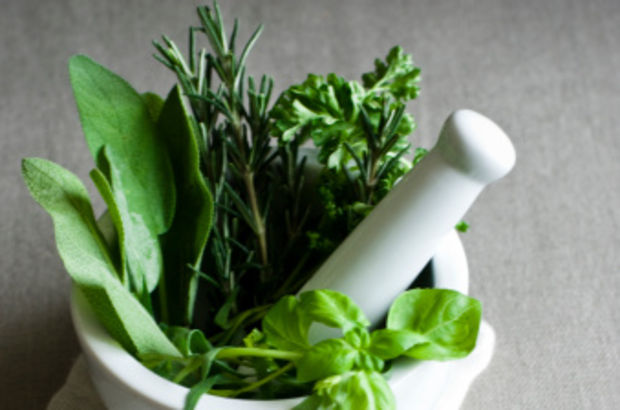 Bitkilerin bilinçsiz tüketimi kansere mi yol açıyor?