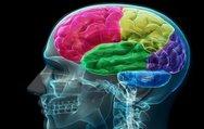 Beyin sağlığınız için bunları mutlaka yapın!