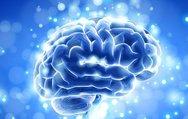 Sağlıklı bir beyin için bunları tüketin