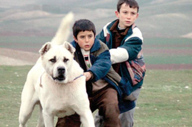 Türk sinemasının en iyi ilk filmleri, mehmet açar yazıları