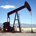 Her yerden petrol fışkırıyor!