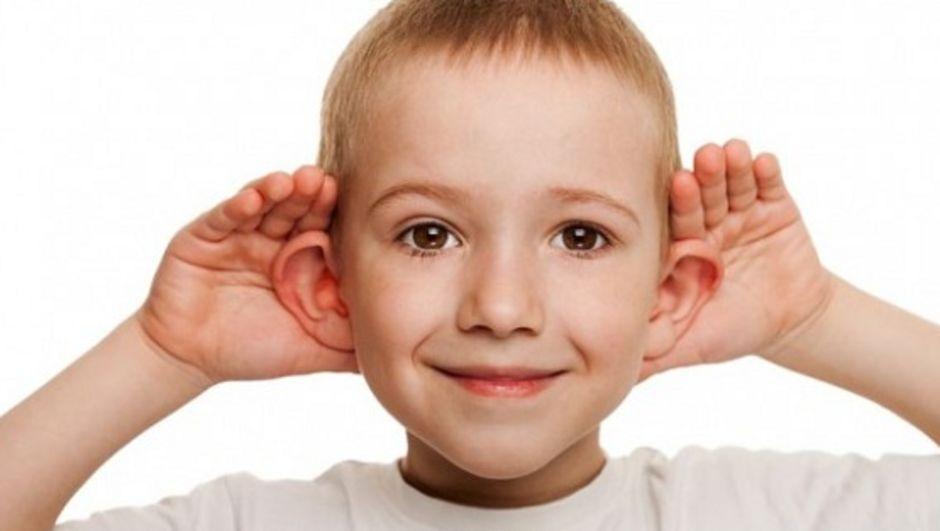 kepçe kulak ile ilgili görsel sonucu