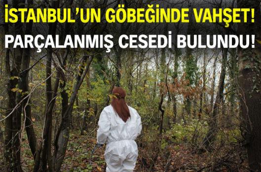 Beykoz'da hayvanlar tarafından parçalanmış ceset bulundu!