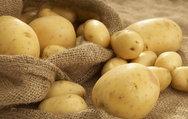Patates şişmanlatmıyormuş!