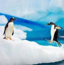 Antarktika'ya açılıyoruz!