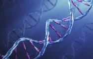 DMD'nin erken teşhisinde ''genetik'' müdahale