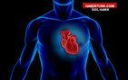 Kalp hastalıklarında ameliyat ne zaman gerekir?