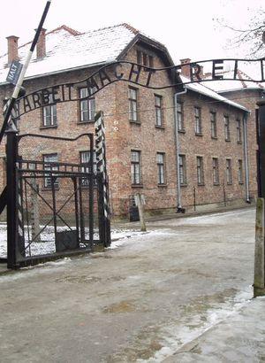 'Nazi anlayışı devam ediyor'