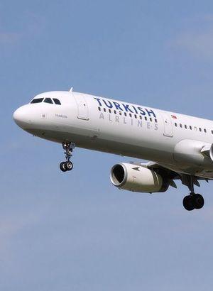 THY uçağına kuş çarptı!