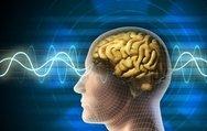 Düzensiz hayat beyin damarlarını tıkıyor!