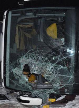 Bingöl'de kaza:48 yaralı!