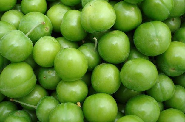 Sonbahar ayları,Erik,Aşeren hamileler,Meyve