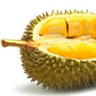 Başbakan Davutoğlu'nun en çok sevdiği meyve Durian