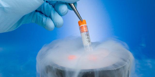 Doç. Dr. Cem Demirel embriyo dondurma ve transfer yönetmini anlattı